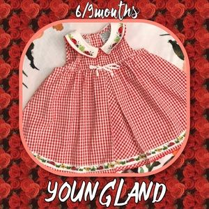 Youngland Ladybug Gingham Dress size 6/9 months